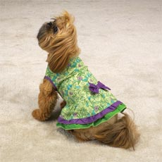 rufflesundress.jpg